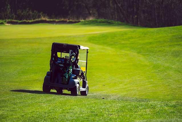 golf cart reverse