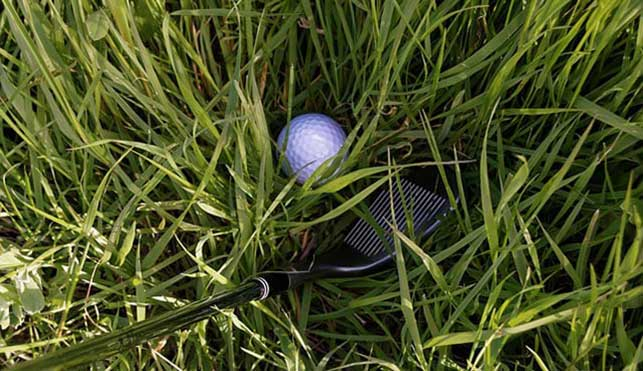 A 50 degree wedge in the grass