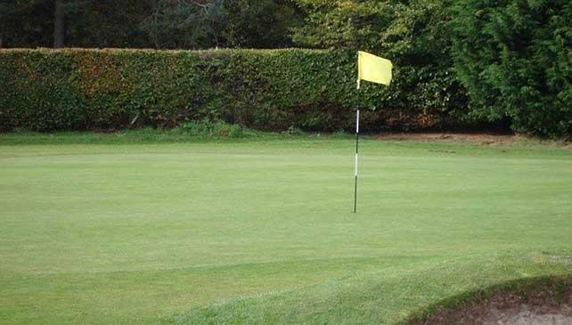 how to get a golf handicap