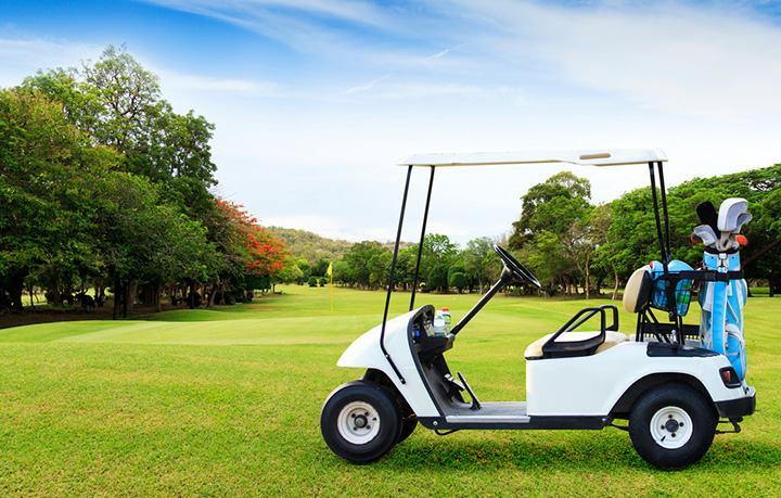 2008 EZGO golf cart